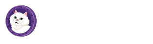 Celeb Plus 셀럽플러스